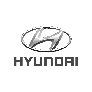 hyundaiC461BE9F-24EC-8885-5290-88A007C18279.png good